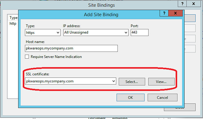 Bind SSL certificate to website